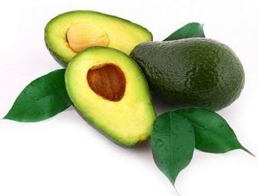 Il frutto di avocado
