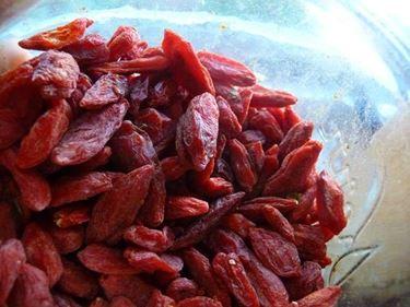 Le bacche rosse di goji