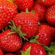 Acheni, i veri frutti