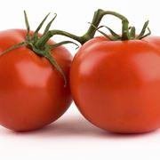 Pomodoro fitoterapia pomodoro propriet for All origine arredi autentici