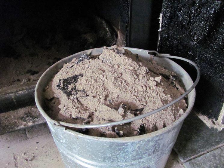 Concime organico polvere