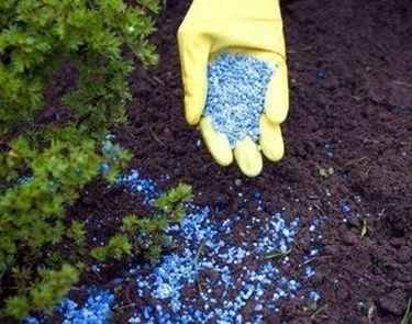 Fertilizzanti chimici