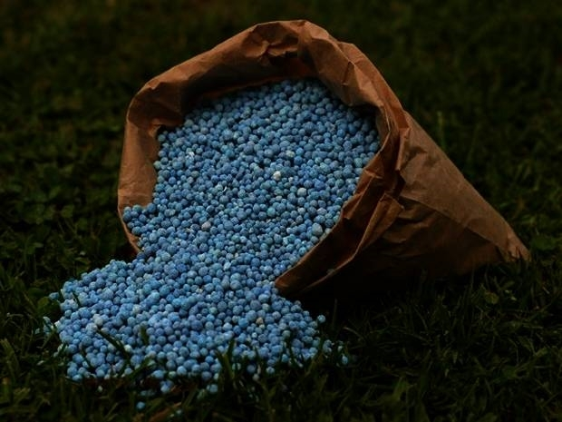 Fertilizzante Per Piante : Fertilizzanti per piante concime