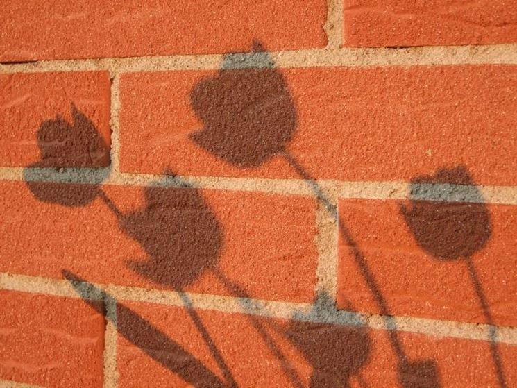Muro mattoni argille