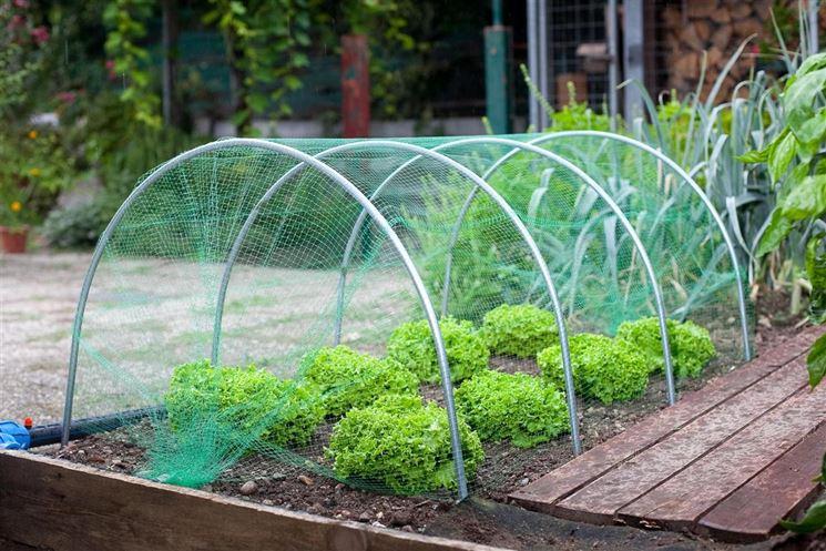 Archetto per serra da giardino