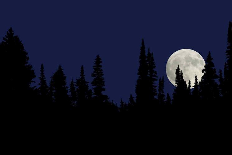 Infuenza luna