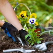 I lavori di giardinaggio in primavera
