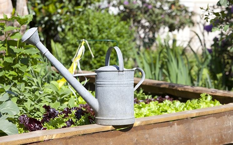Annaffiare orto e giardino