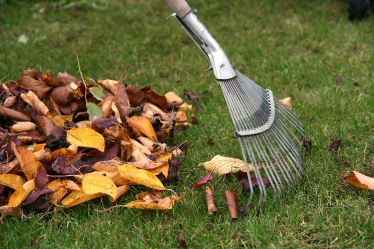 Lavori di giardinaggio in autunno