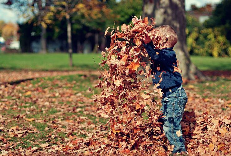 pulizia giardino autunno