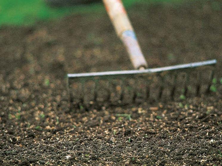 Preparare il terreno alla semina del prato