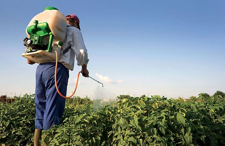 Somministrazione manuale pesticida