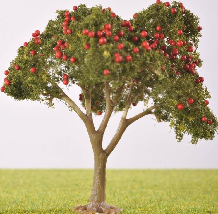 Potatura piante potatura come potare le piante - Fruit trees in small spaces decoration ...