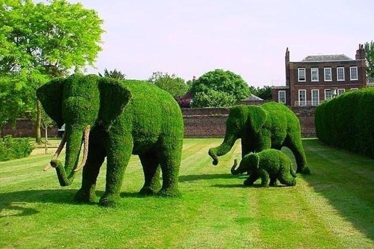 Elefanti in giardino