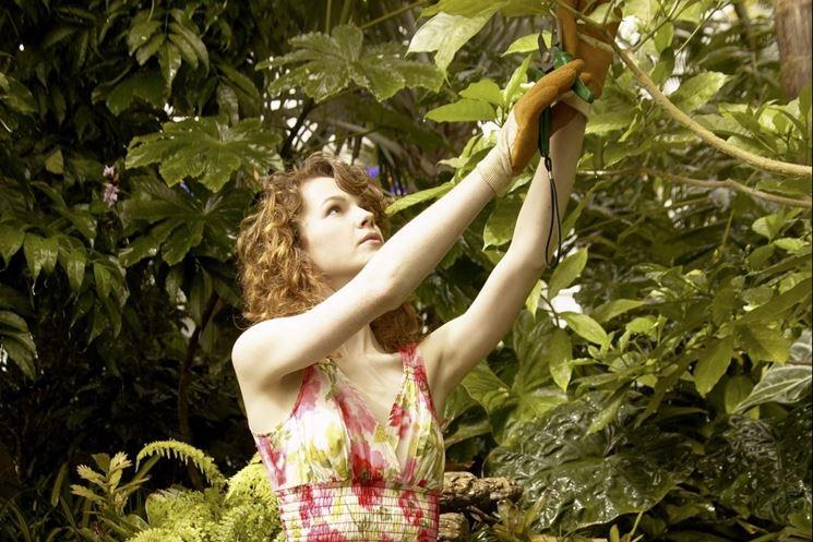 La potatura di un albero da frutto