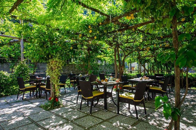 Alberi da ombra alberi latifolie giardino di alberi - Albero sempreverde da giardino ...