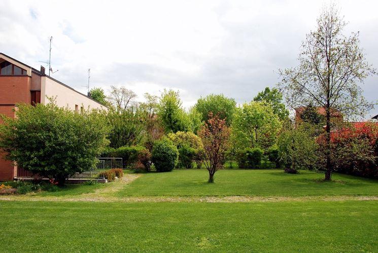 giardino con alberi