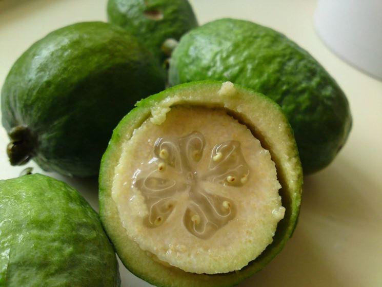 Interno del frutto di feijoa
