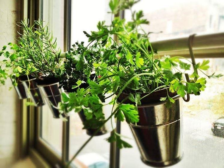 Risultati immagini per piante in balcone ikea
