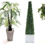 piante finte ikea