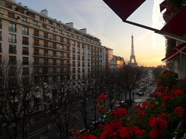 Gerani a Parigi