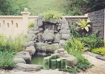 Costruire un laghetto piante acquatiche for Piante da laghetto