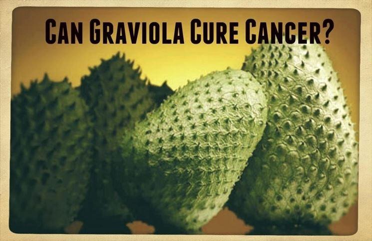 La graviola pu� curare il cancro?