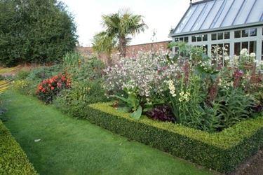 giardino con azalee