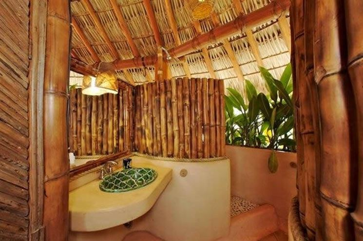 Bamb piante da giardino bambu pianta for Bambu arredamento