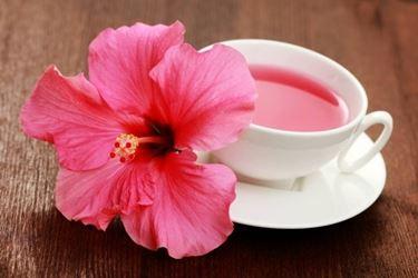 tisana di hibiscus;