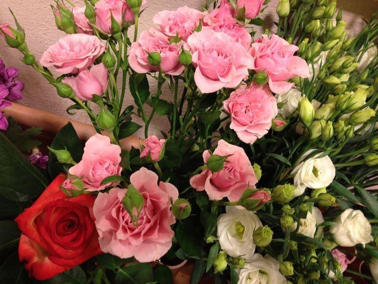 Lisianthus di colore rosa coltivati a terra
