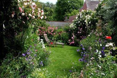 Piante sempreverdi e fiori da giardino