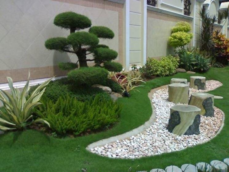 Piante da giardino sempreverdi piante da giardino le for Alberi sempreverdi da ombra