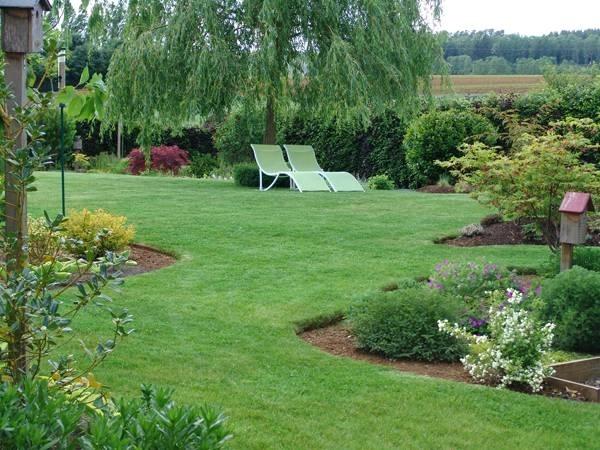 Piante da giardino pieno sole piante rampicanti da far for Piante verdi perenni da giardino