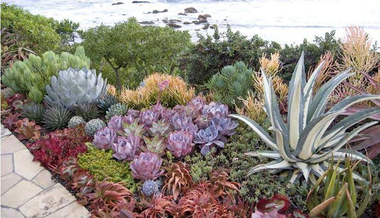 Assez Giardino di piante grasse - Piante grasse - Creare un giardino con  JE28