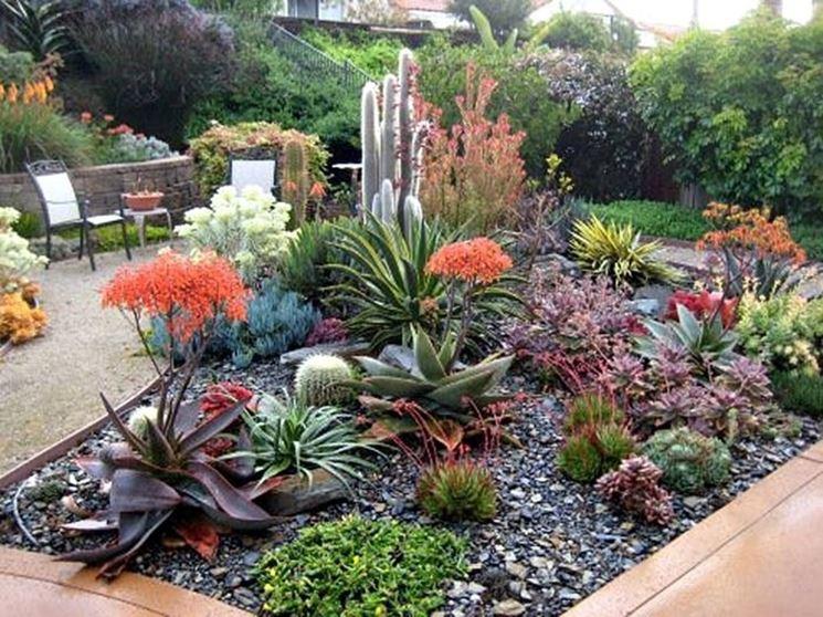 Très Giardino piante grasse - Piante grasse - Piante grasse in giardino FD27
