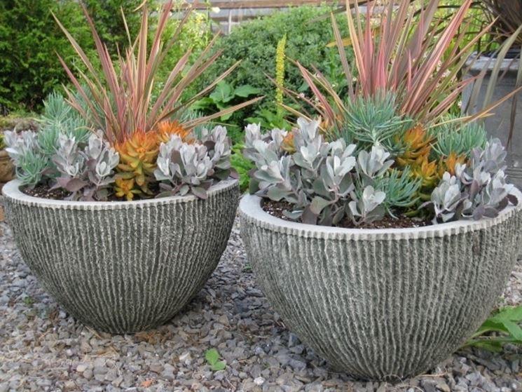 Vasi per piante grasse di pietra