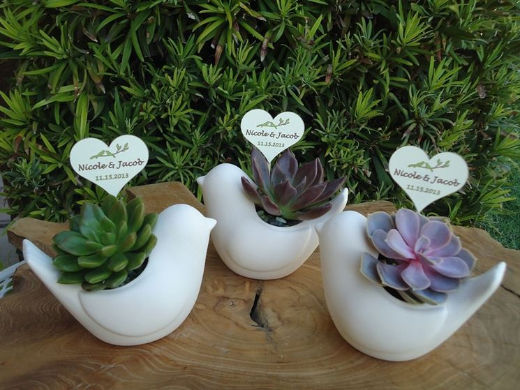 Piante grasse in ceramica