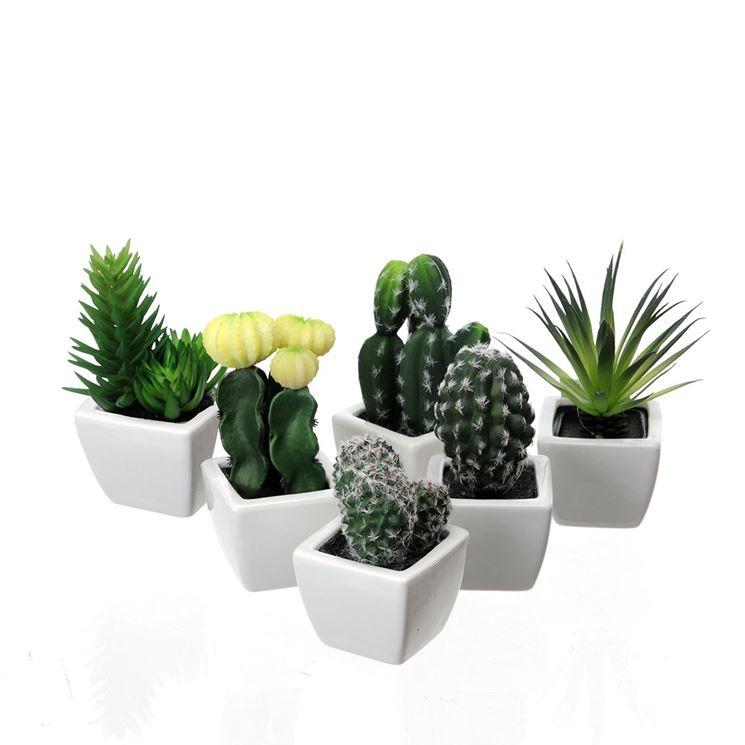 Vasi per piante grasse piante grasse vasi piante grasse for Piante da aiuola