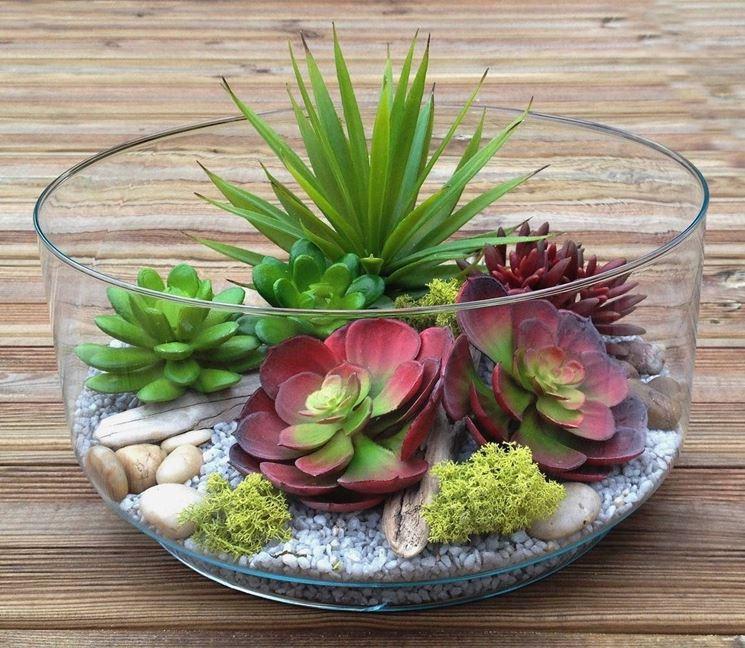Cactus in bicchiere di vetro