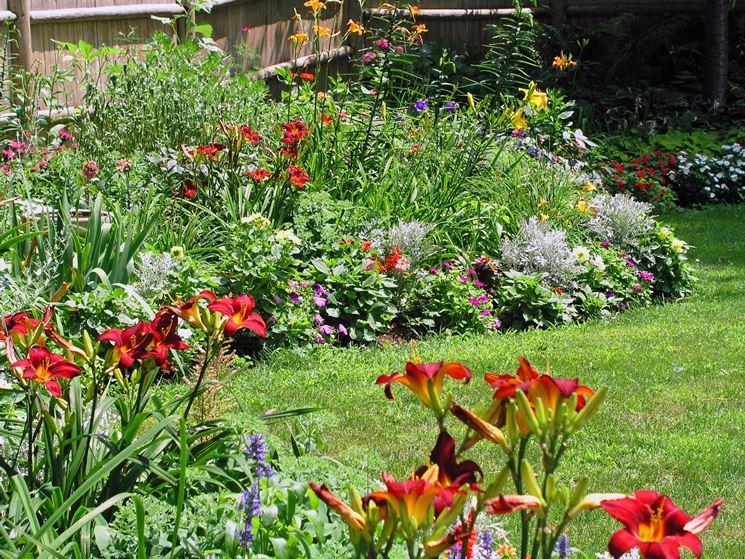 10 fiori perenni per il sole piante perenni fiori for Piante da giardino perenni pieno sole