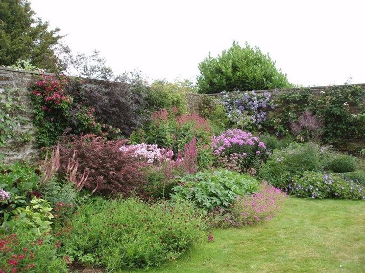 Fiori da bordura piante perenni fiori da bordura for Piante verdi perenni da giardino