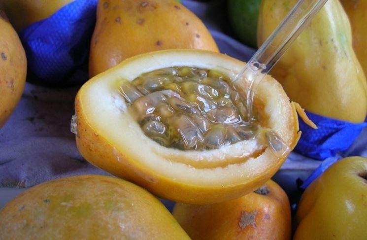 Sezione della frutta della passione