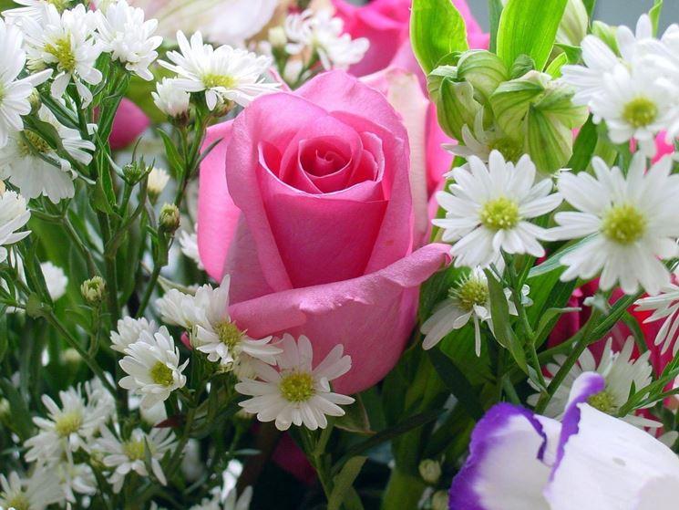 rosa in bouquet