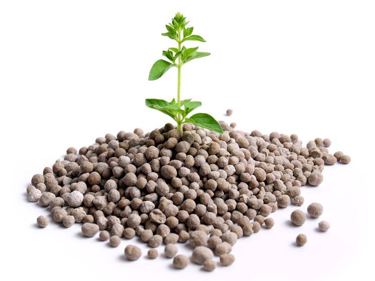 Fertilizzante granulare