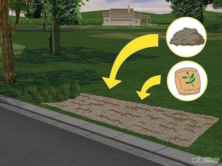 preparare terreno siepe