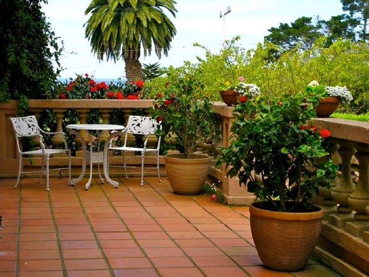Best Arredare Una Terrazza Con Piante Pictures - Design Trends 2017 ...