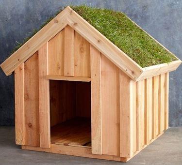 Cuccia costruita con legno riciclato da cassette