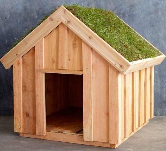 Super Come costruire una cuccia per cani - Accessori da esterno  EU71