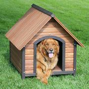 costruire cuccia cane
